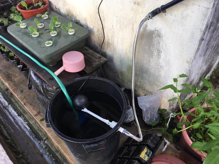 DIY Membuat Penyiram Automatik Tanaman Dengan Mudah