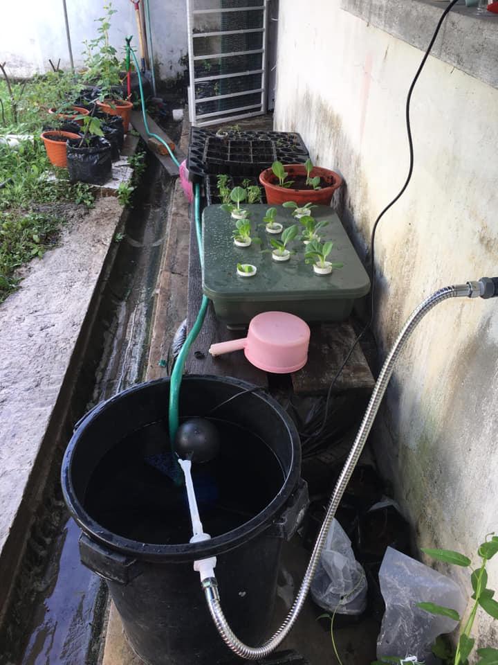 DIY Membuat Penyiram Automatik Tanaman Dengan Mudah 4