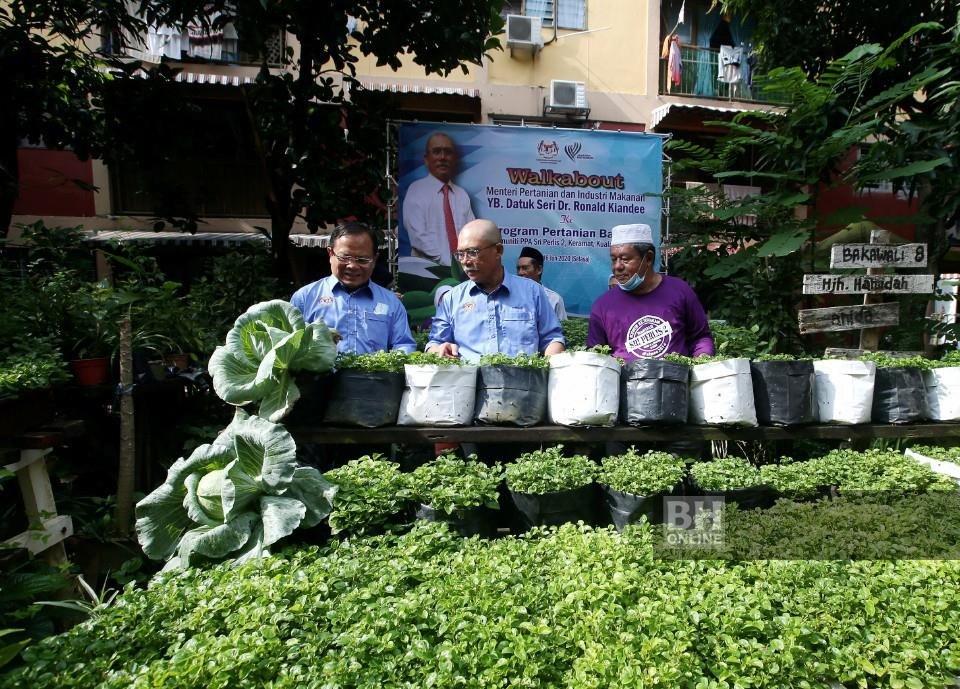 Projek Pertanian Bandar - Kredit Berita Harian