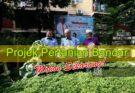 Projek Pertanian Bandar - Pelan Jana Semula Ekonomi Negara (PENJANA)