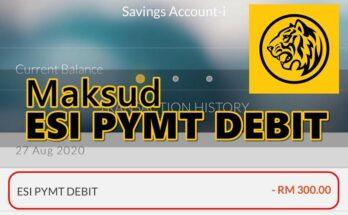 ESI PYMT DEBIT MAYBANK