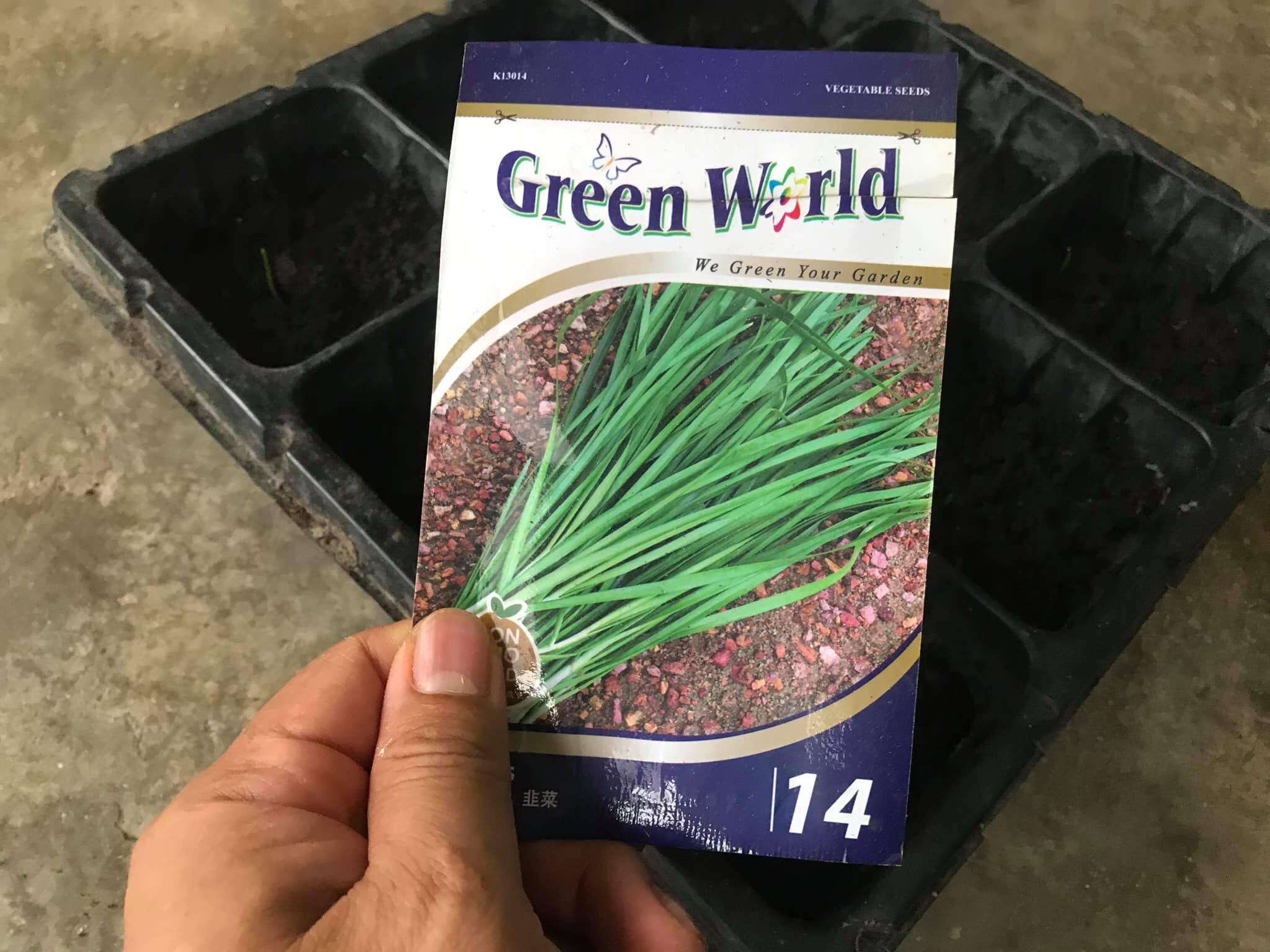 Biji Benih Pokok Kucai Jenama Green World