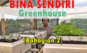 Membina Sendiri Rumah Hijau 'Greenhouse' Mini - Bahagian 2