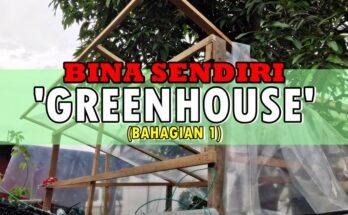 Membina Sendiri Rumah Hijau 'Greenhouse' Mini
