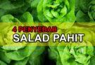 4 Sebab Kenapa Salad Pahit & Cara Mengatasinya